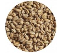 Солод пшеничный WHEAT LIGHT (Пшеничный Светлый), 1кг